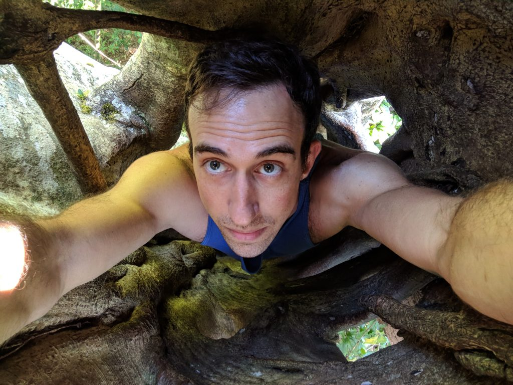 Chris Chronopoulos in a tree